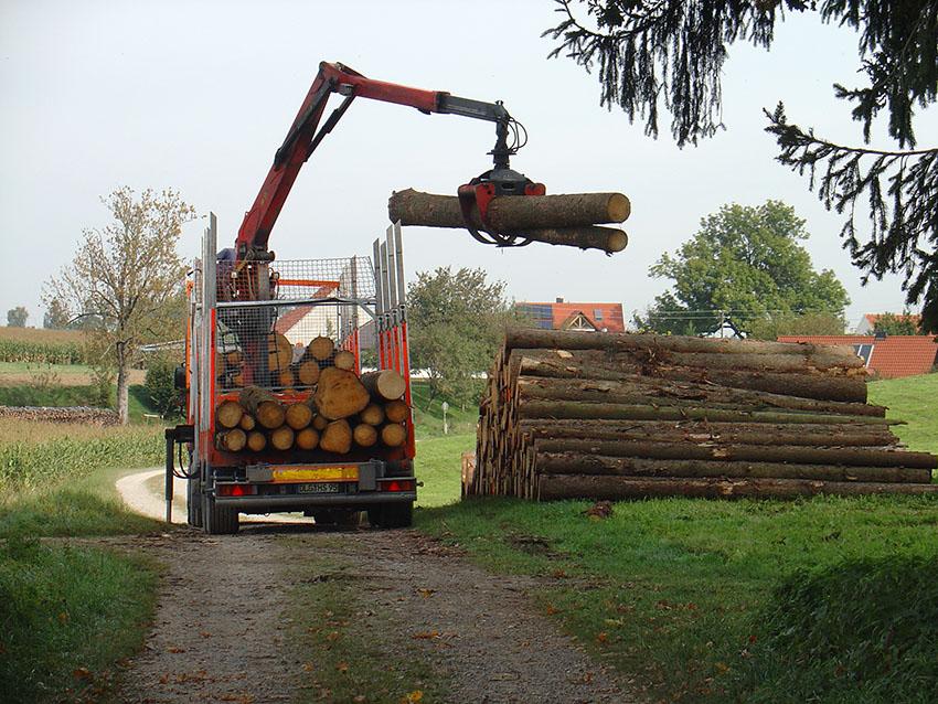Holzvermarktung-Forst-Wald-Friedberg